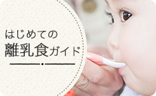 バナー(小)離乳食ガイド