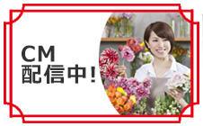 ヨシケイのCM動画③
