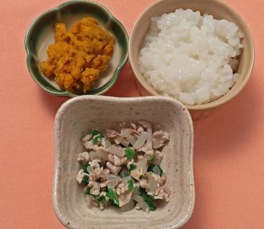 豚肉と野菜のやわらか煮・パンプキンサラダ・おかゆ